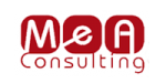 MeA Consulting ha scelto BLIN DATA ROOM